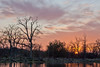 Winter Sunset over Small Pond, Near Red Bluff CA